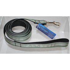 Green and White Preppy Stripes Nylon Dog or Pet 6' Leash Mirage Pet Products