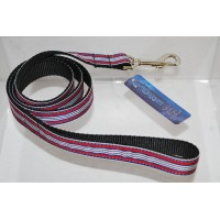 Red/White Preppy Stripes Nylon Dog or Pet 4' Leash Mirage Pet Products (4 Foot)