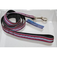 Red/White Preppy Stripes Nylon Dog or Pet 6' Leash Mirage Pet Products (6 Foot)
