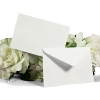 Memo Card Envelopes (Qty of 50)